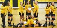 2014 Opp Bobcats varsity volleyball team